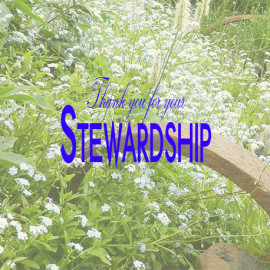 Thank you for your Stewardship
